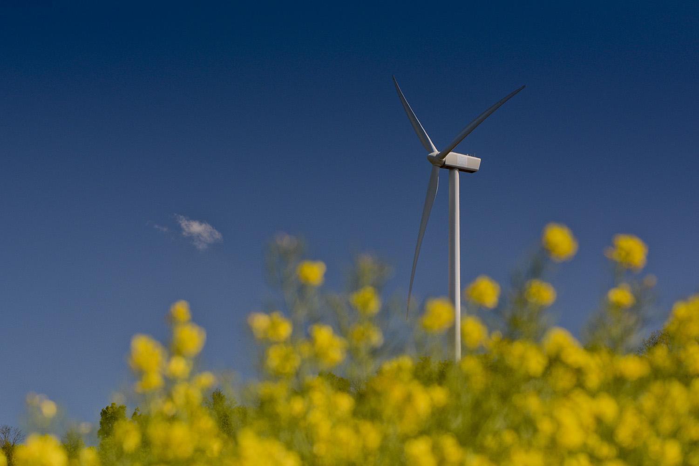 L'energie du vent